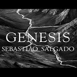 Portfolio-Genesis
